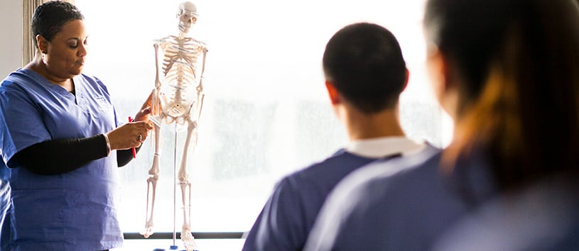 An instructor at the front of the class giving healthcare career training. She is showing a model of a skeleton.